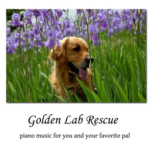 CD Label Golden Retriever Lilacs_