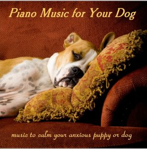 CD Piano Music Dog Jewel 1up