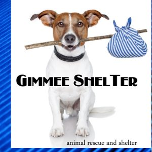 Gimmie-Shelter-Terrier-Only